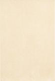 pelle-beige-25x37